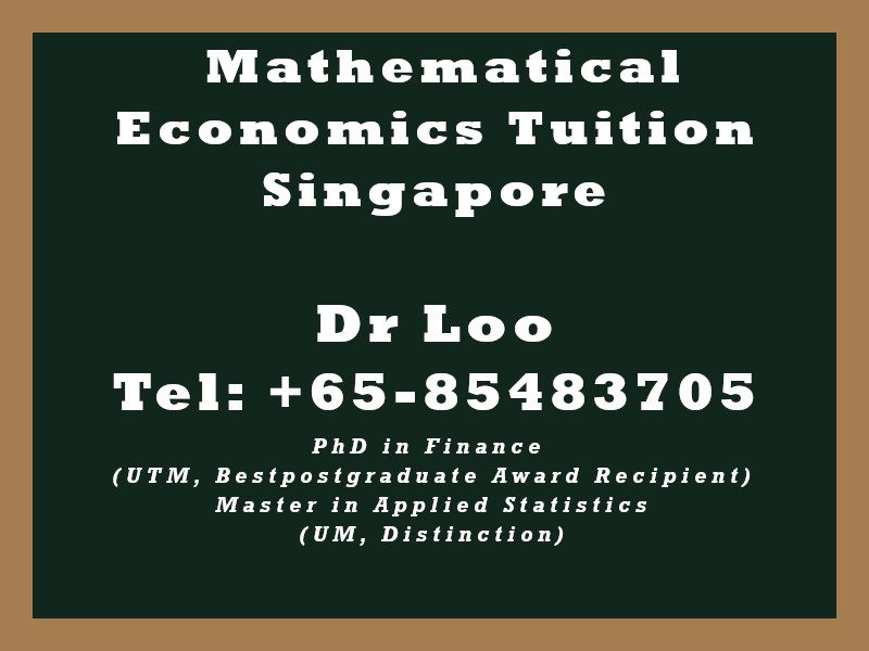 Mathematical Economics Private Tuition in Singapore